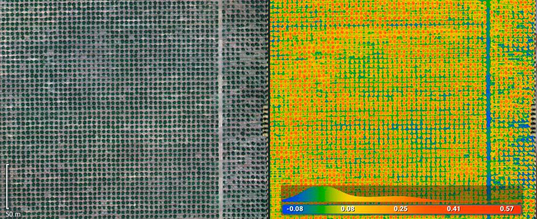 pix4d fields drone