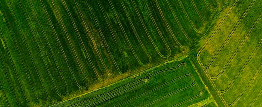 pix4d fields drone software
